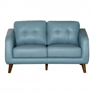 Darlinghurst Leather 2 Seater Sofa