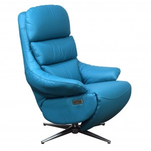 Omega dual motor electric recliner
